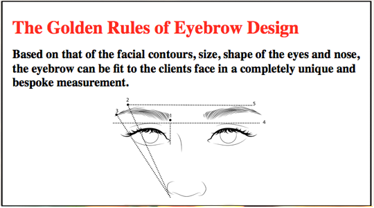 The-Golden-Rules-of-Eyebrow-Design