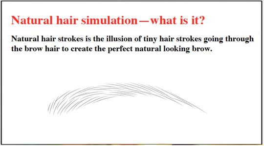 Natural-Hair-Simulation-Eyebrows